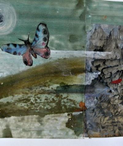 Sans titre (papillon noctambule)